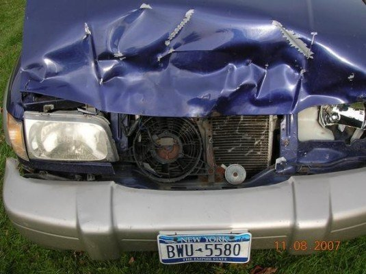 Should I call the auto insurance company if my car hits a deer?